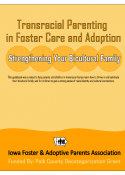 Transracial Parenting in Foster Care and Adoption
